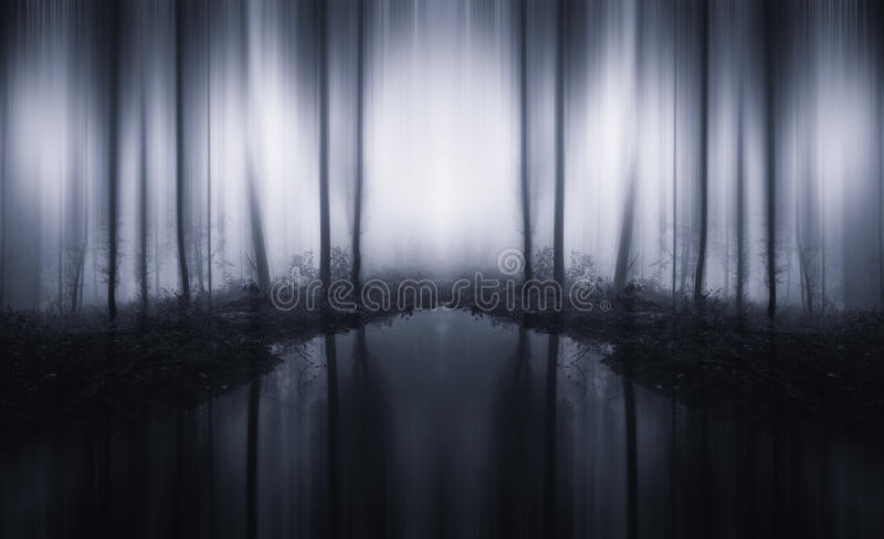 Surreal infinite forest with lake and fog. Surreal strange mysterious infinite forest with dark lake and fog stock photos