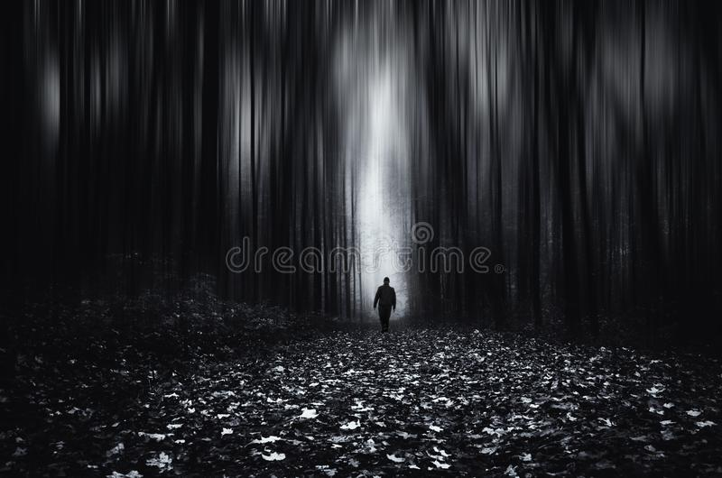 Surreal infinite forest with man walking on other side stock photos
