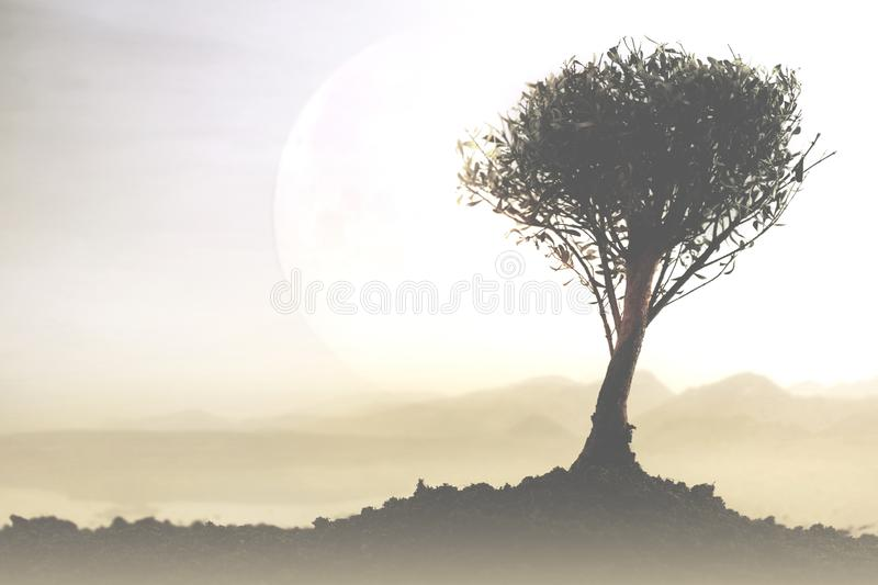 Surreal landscape with a tree illuminated by a giant moon stock photography