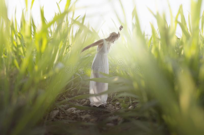 moment of a young woman relaxing in the midst of gigantic grass royalty free stock images