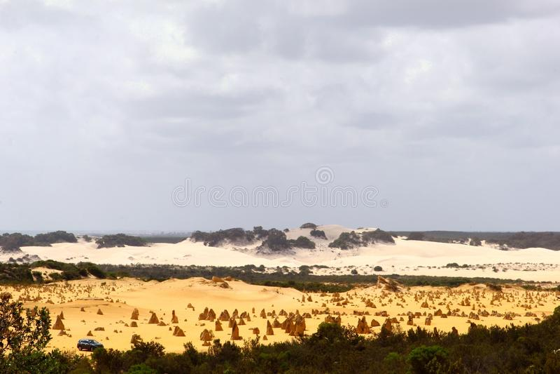 Surreal panorama van gele en witte zandduinen in de Toppen verlaat, Australië royalty-vrije stock fotografie