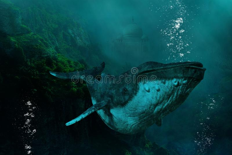 Surreal Undersea Humpback Whale, Nature. Surreal undersea humpback whale swimming in the ocean or sea. In the background is the ancient ruins of the Taj Mahal