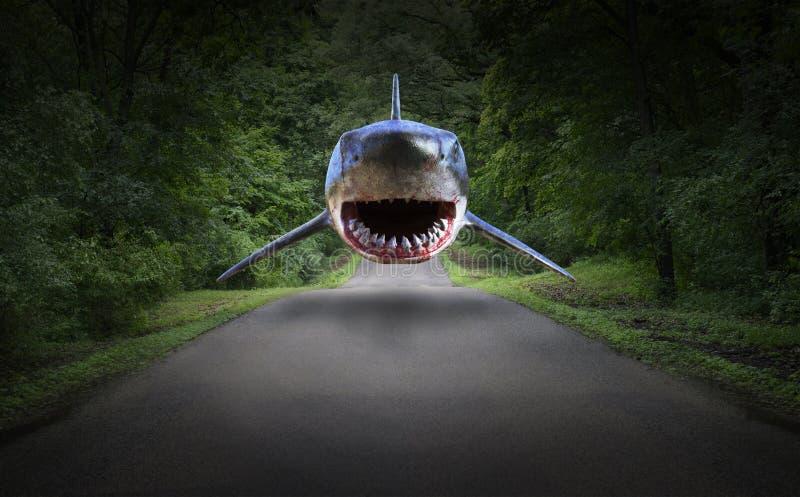 Surrealer Haifisch, Straße, Wald, Natur lizenzfreies stockbild