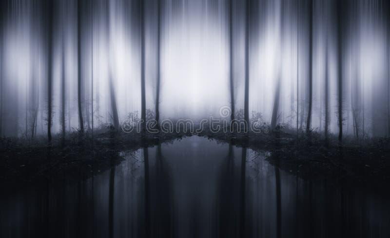 Surrealer unbegrenzter Wald mit See und Nebel stockfotos
