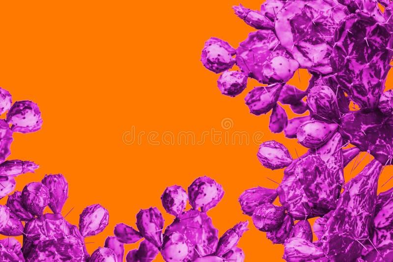Surrealistic purple cactus on a orange background in minimal style stock image