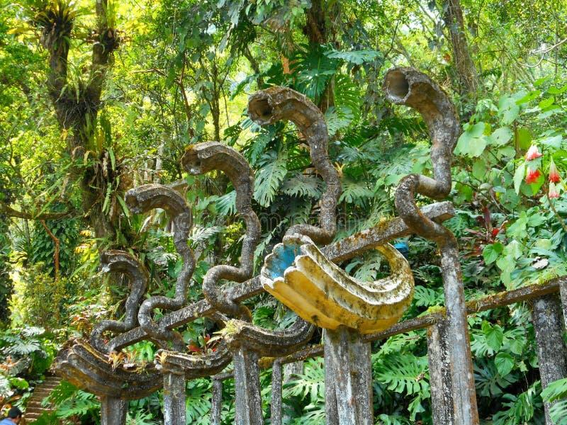 Surrealistisk trädgård royaltyfri foto
