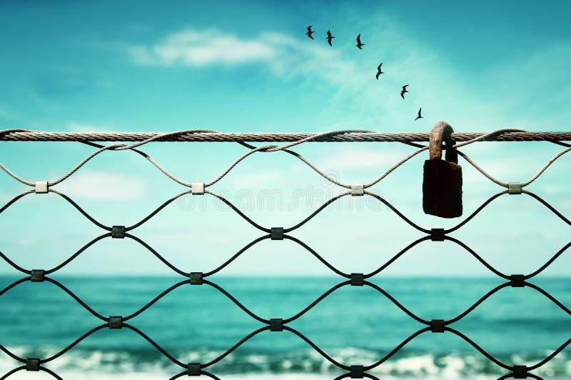 surrealistyczny enigmatyczny obrazek latający ptaki i rama plażowy krajobrazu obraz royalty free