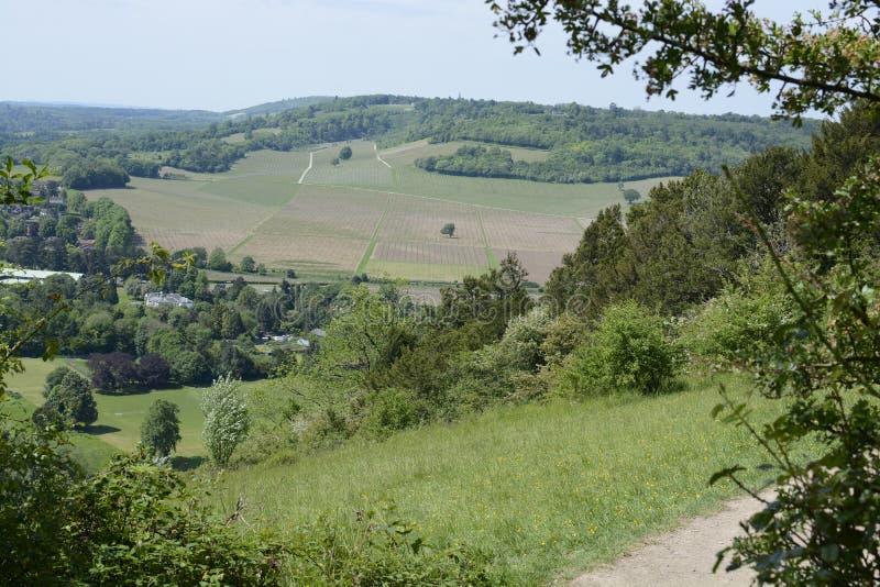 Surrey-Landschaft nahe Dorking england stockfoto