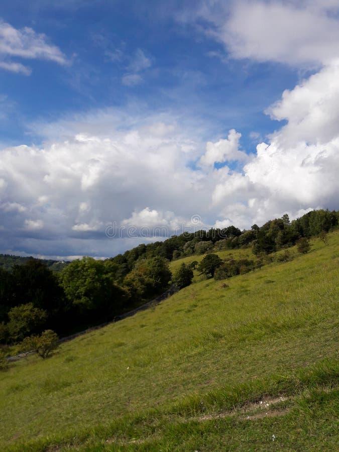 Surrey wzgórzy teren znakomity naturalny piękno obrazy stock