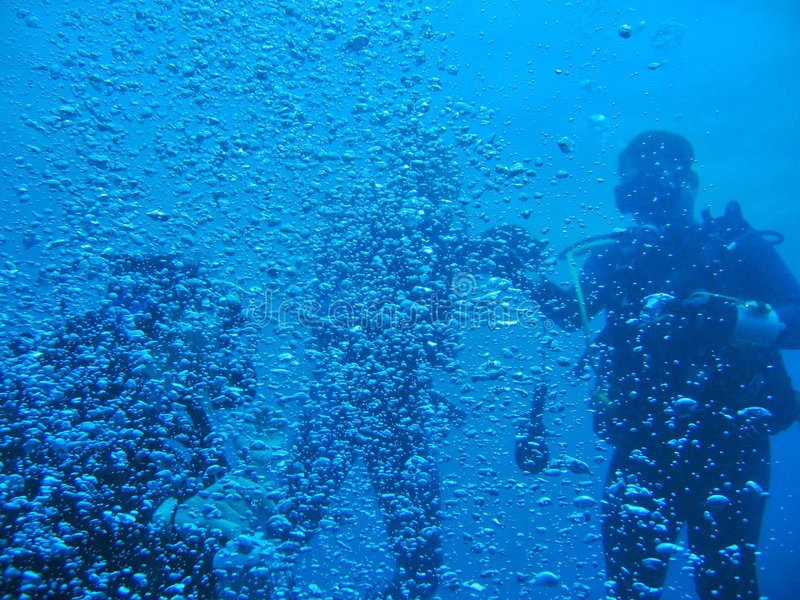 Download Surrounded by Bubbles stock image. Image of dive, activity - 2667289