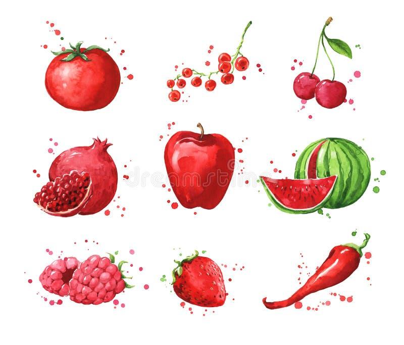 Surtido de comidas, de fruta de la acuarela y de vegtables rojos ilustración del vector