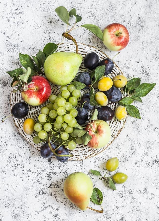 Surtido de fruta fresca - uvas, peras, manzanas, ciruelos en un fondo ligero fotos de archivo libres de regalías