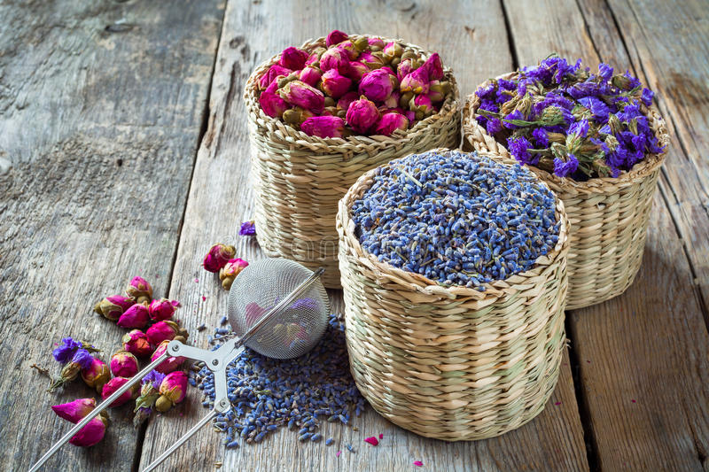 Surtido de la infusión de hierbas: lavanda, rosas y nomeolvides imagenes de archivo
