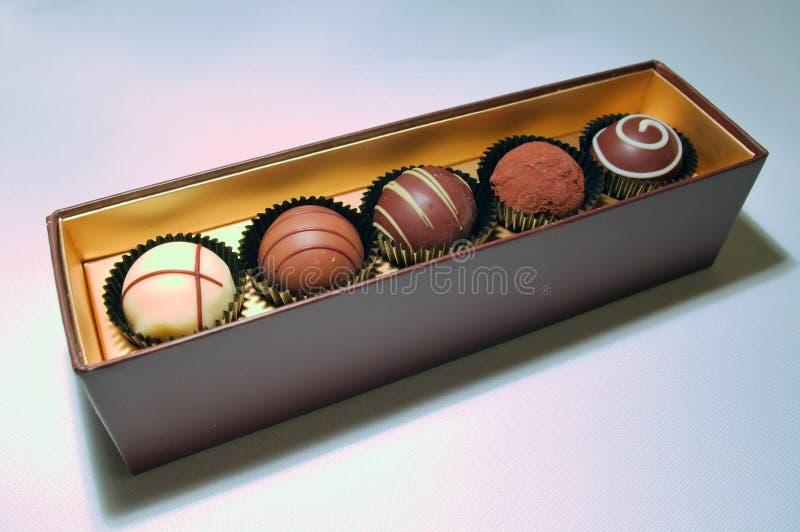 Surtido de las trufas de chocolate foto de archivo