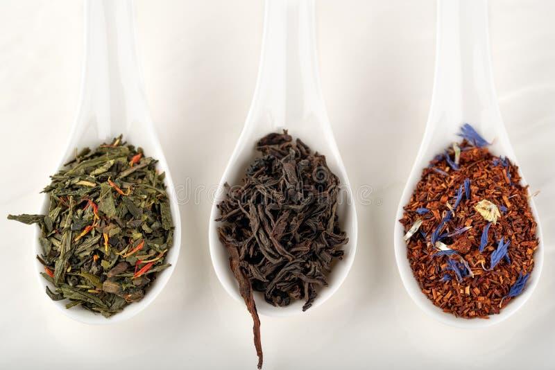Surtido de rooibos secos del té, negro, verde, en el SP de cerámica blanco foto de archivo libre de regalías