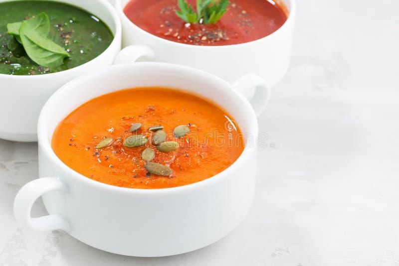 Surtido de sopa poner crema vegetal colorida imagen de archivo