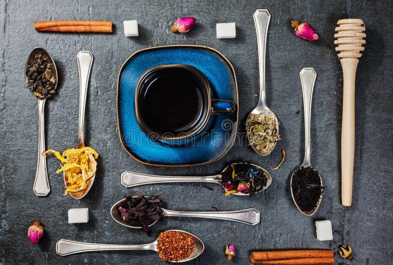 Surtido de té seco y taza de té caliente El té verde, té negro, té verde, rooibos, seca los brotes color de rosa en cucharas foto de archivo libre de regalías