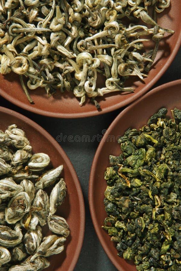 Surtido de tés verdes fotografía de archivo