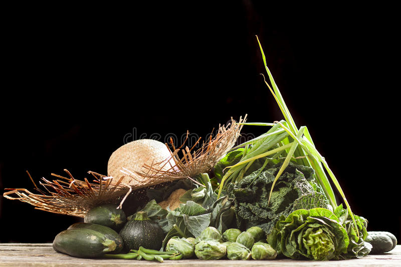 Surtido de verduras verdes fotografía de archivo