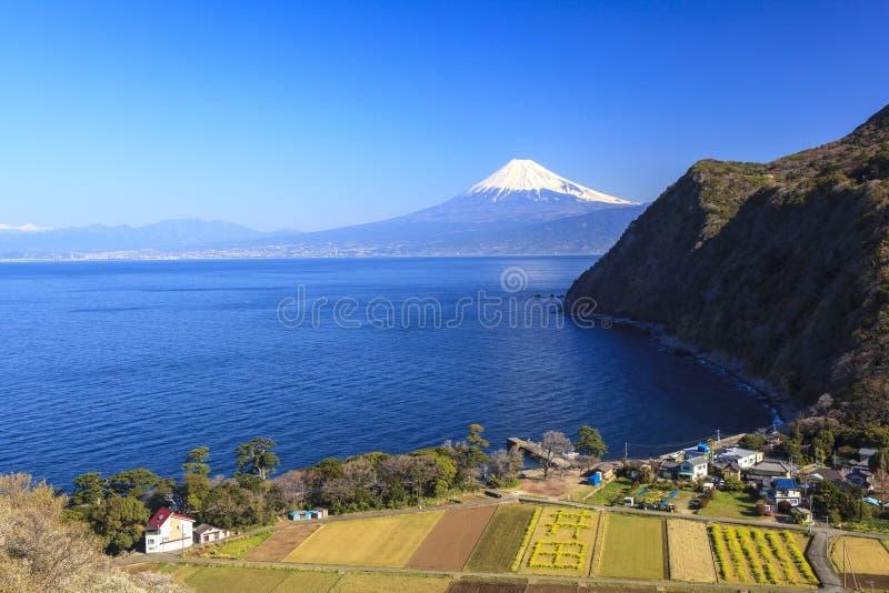 Suruga zatoka i Mt fuji zdjęcie royalty free