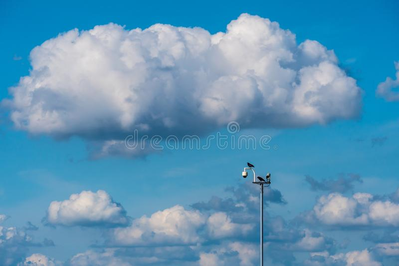 Security cameras keep an eye on the environment royalty free stock photography
