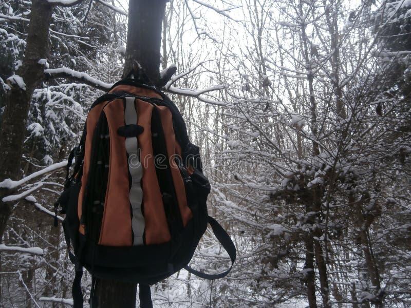 Survie d'hiver photos stock