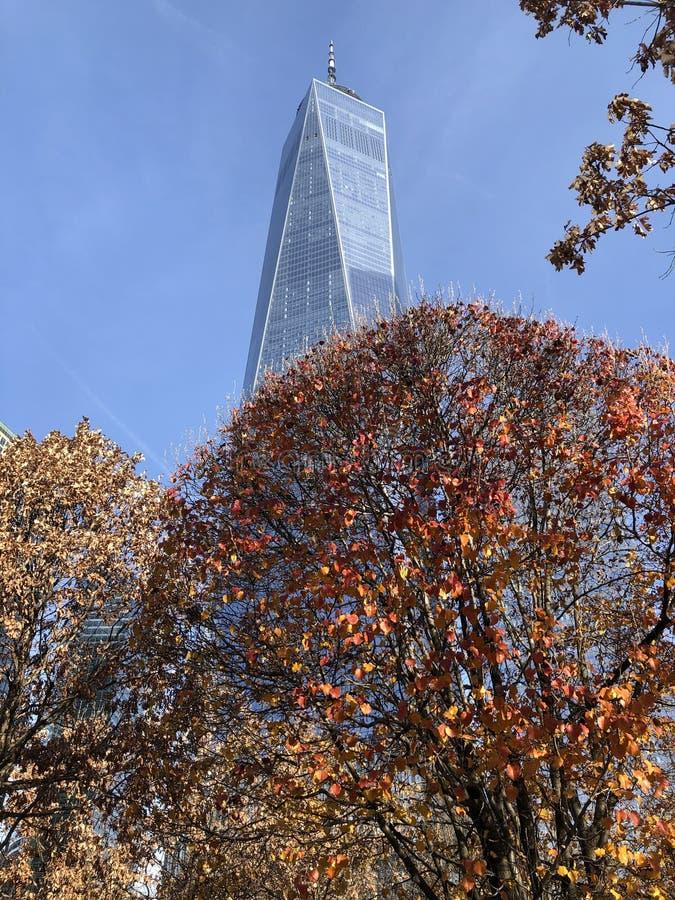 Survivor Tree på 1911 års minnesstund i New York arkivbilder
