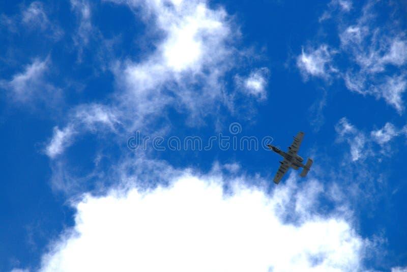 Survol de la phacochère A-10 photos stock