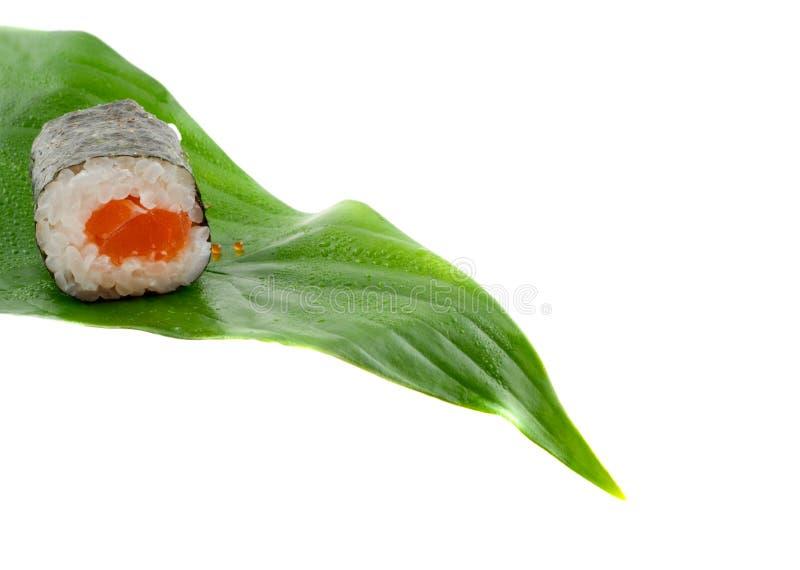 Sushi. royalty-vrije stock foto's