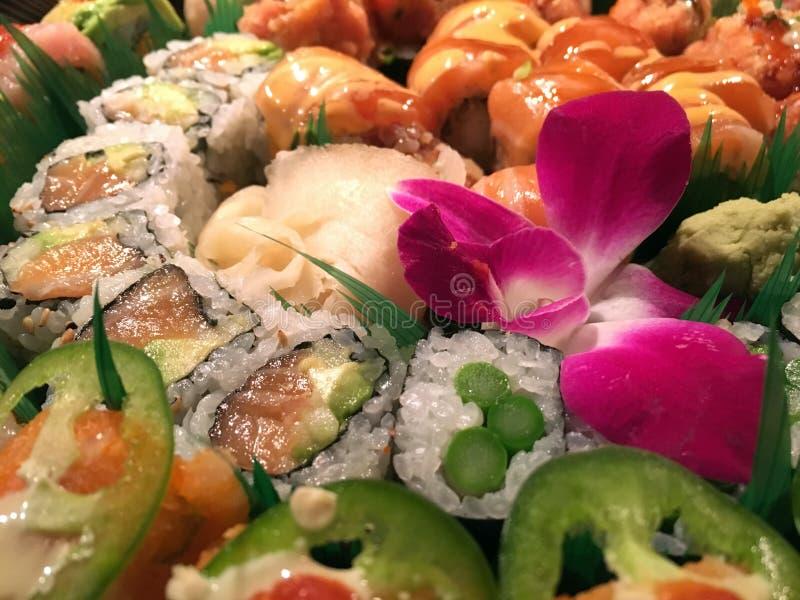 Sushi Rolls immagini stock libere da diritti