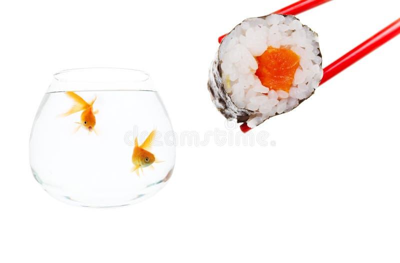 Sushi surprise royalty free stock images