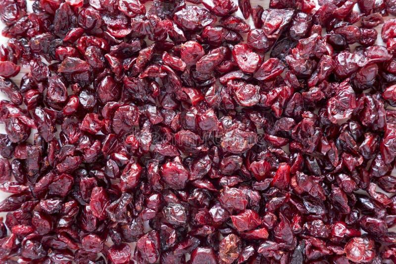 Susi organicznie cranberries, odgórny widok overhead Zakończenie fotografia royalty free