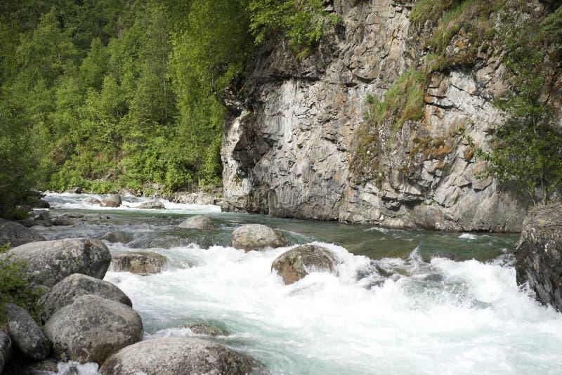 Susitna rzeka Alaska zdjęcia royalty free