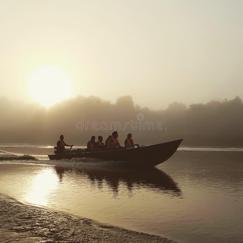 Susnet fartygtur på den Kinabatangan floden royaltyfria foton