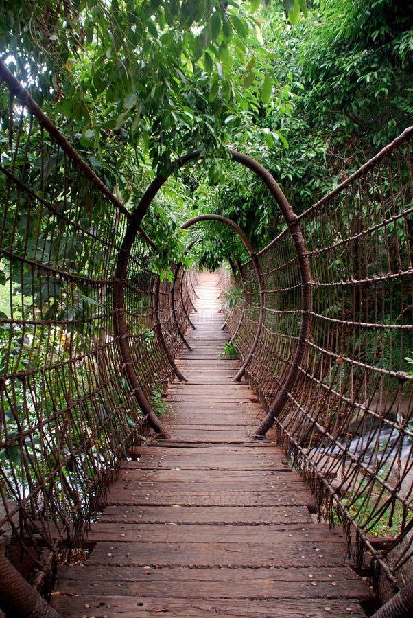Suspended bridge royalty free stock image