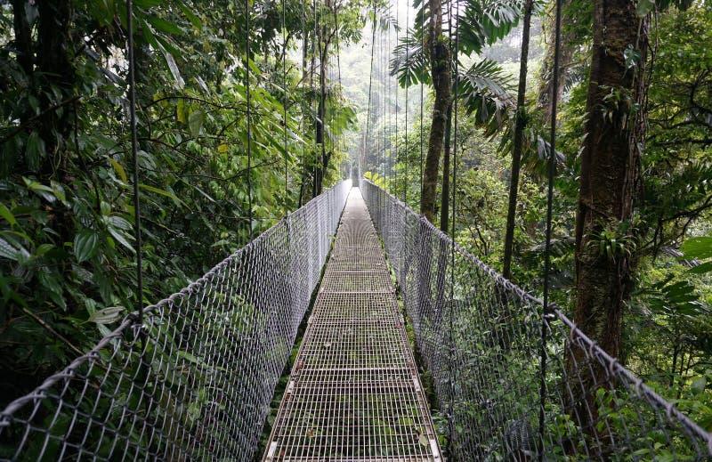 Suspended Bridge at La Fortuna royalty free stock image