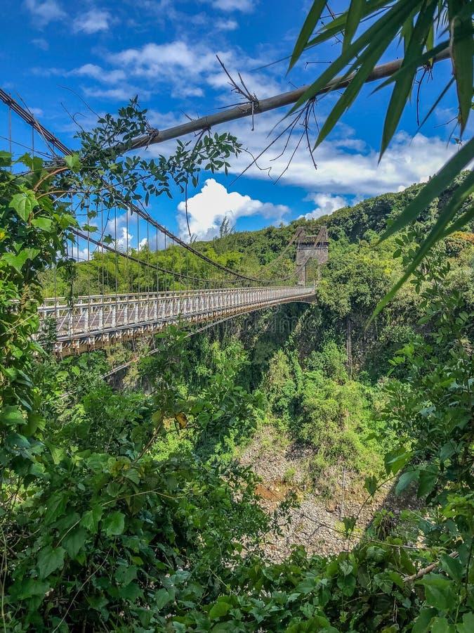 Old suspended bridge in the jungle on la reunion island. Old suspended bridge surrounded by jungle on la reunion island stock image