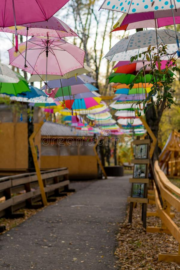 Suspended colorful rain umbrellas over the path in the city Park among the trees stock image