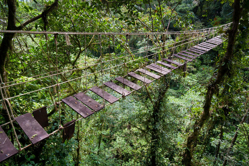 Download Suspension bridge stock image. Image of scenic, costa - 23825227