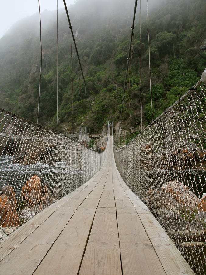 Download Suspension Bridge stock photo. Image of nature, park - 24231092