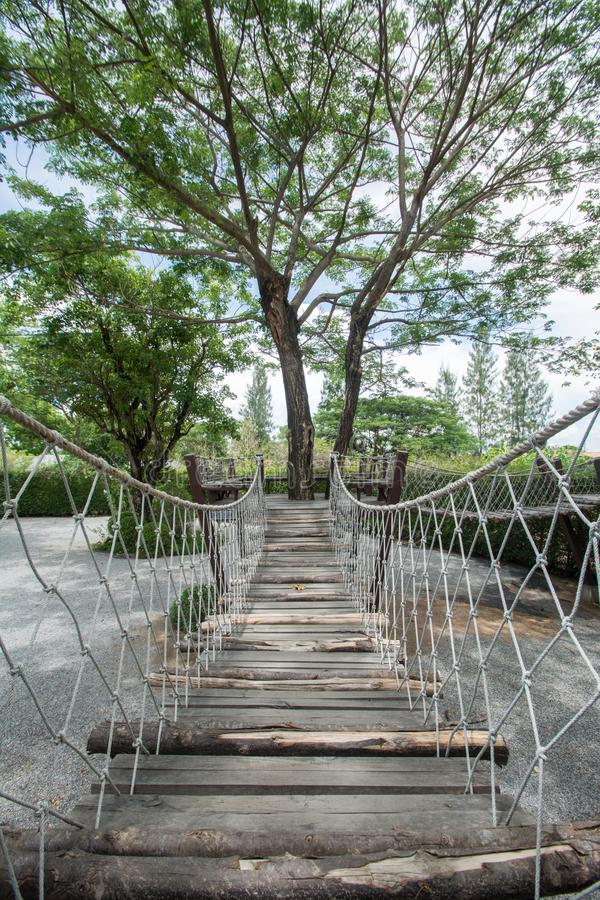 Suspension bridge with big tree stock photo