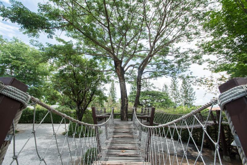 Suspension bridge with big tree stock images