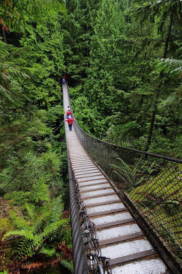 Suspension bridge crossing a canyon royalty free stock images