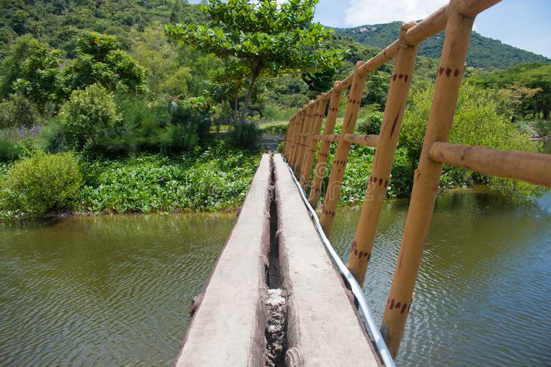 Suspension bridge, Crossing the river, ferriage in the woods.  stock photography