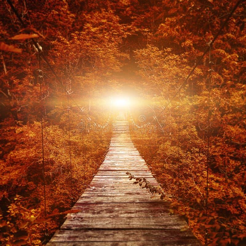 Free Suspension Bridge. Path To The Light Stock Photo - 169220590