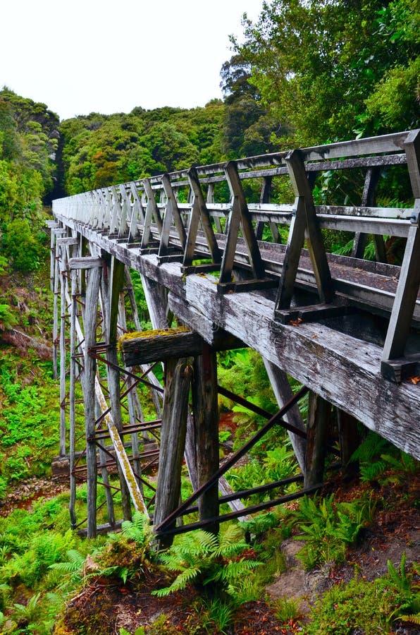 Suspension Bridge, South Coast Track. Fiordland National Park, New Zealand royalty free stock image