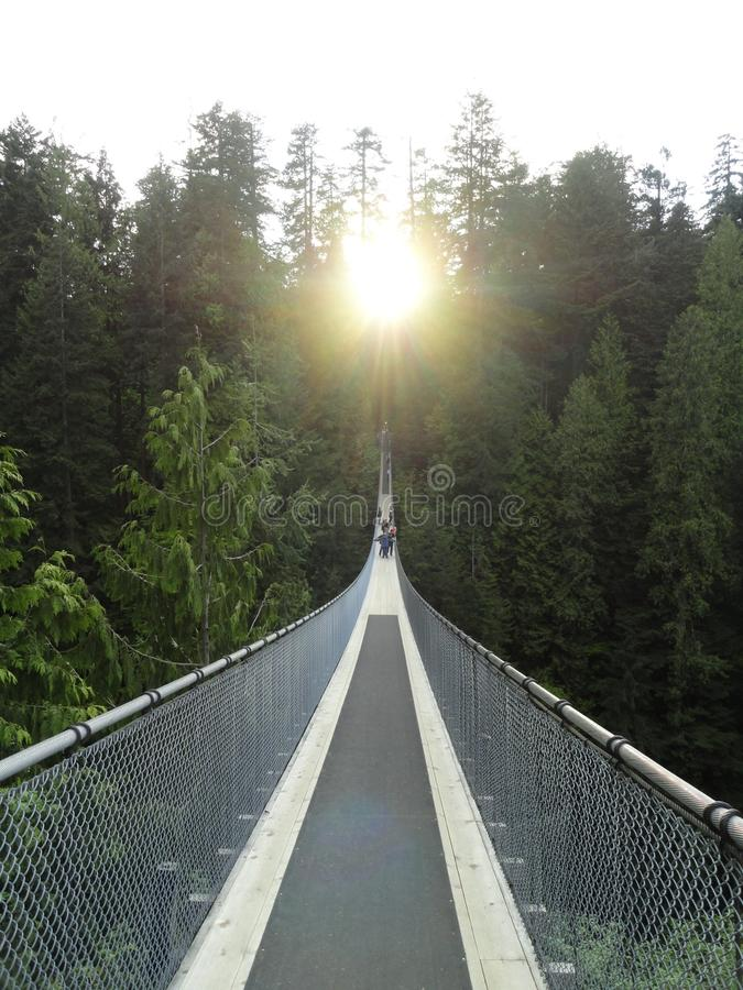 Suspension Bridge Vancouver. Capilano Suspension Bridge in Park Vancouver with setting sun. One of the oldest tourist attractions in the Vancouver area is the royalty free stock photography