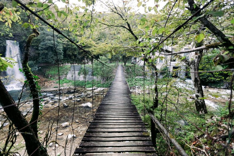 Suspension wooden bridge in the forest royalty free stock photos