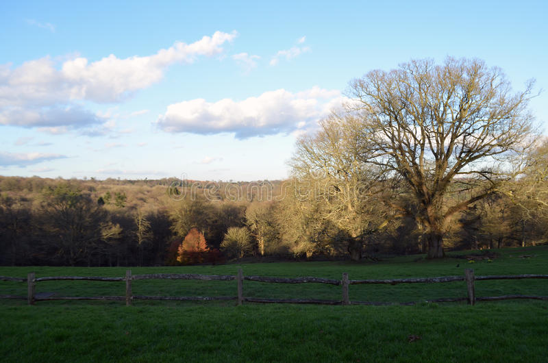 Sussex countryside in Spring. stock photo