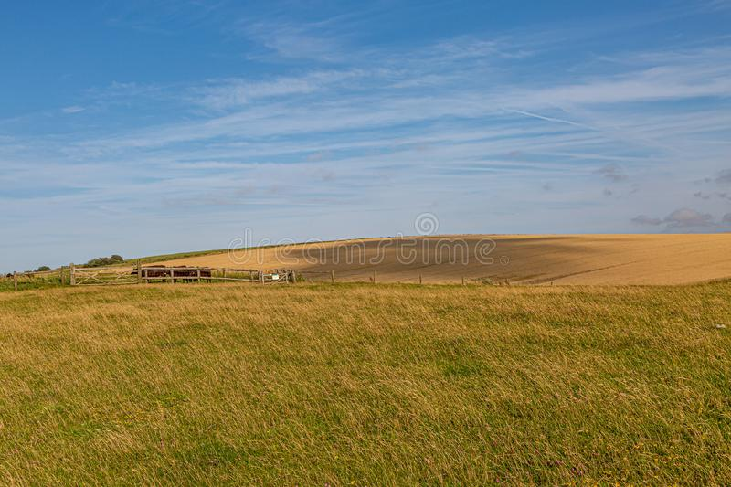 Sussex Farm View. A cloud shadow passing over a field along the South Downs Way in Sussex, on a sunny summers evening royalty free stock photography